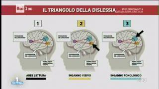 Ne parliamo in studio con Giacomo Stella, Professore Psicologia Clinica - Università di Modena e Reggio Emilia e Franco Botticelli, Presidente Associazione Italiana Dislessia.
