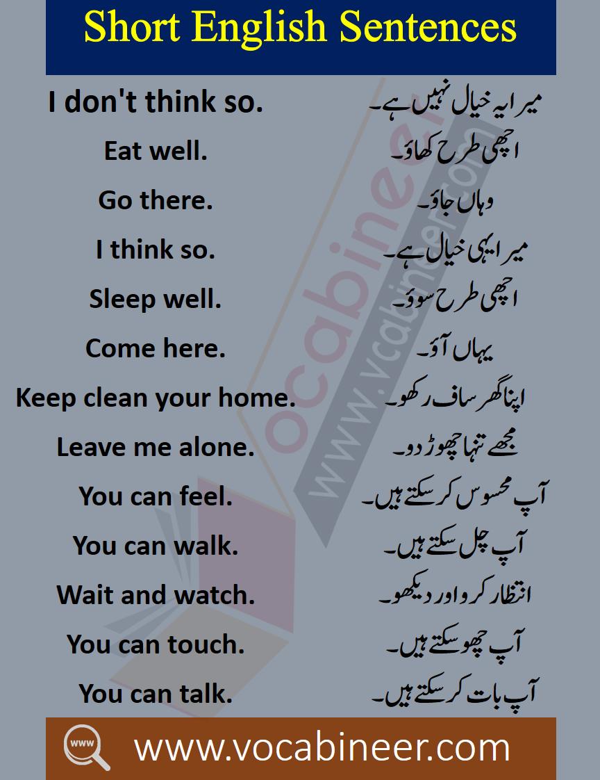 Basic English Learning Book In Urdu Download Pdf Learn English Words Basic English Sentences English Phrases Sentences [ 1122 x 864 Pixel ]