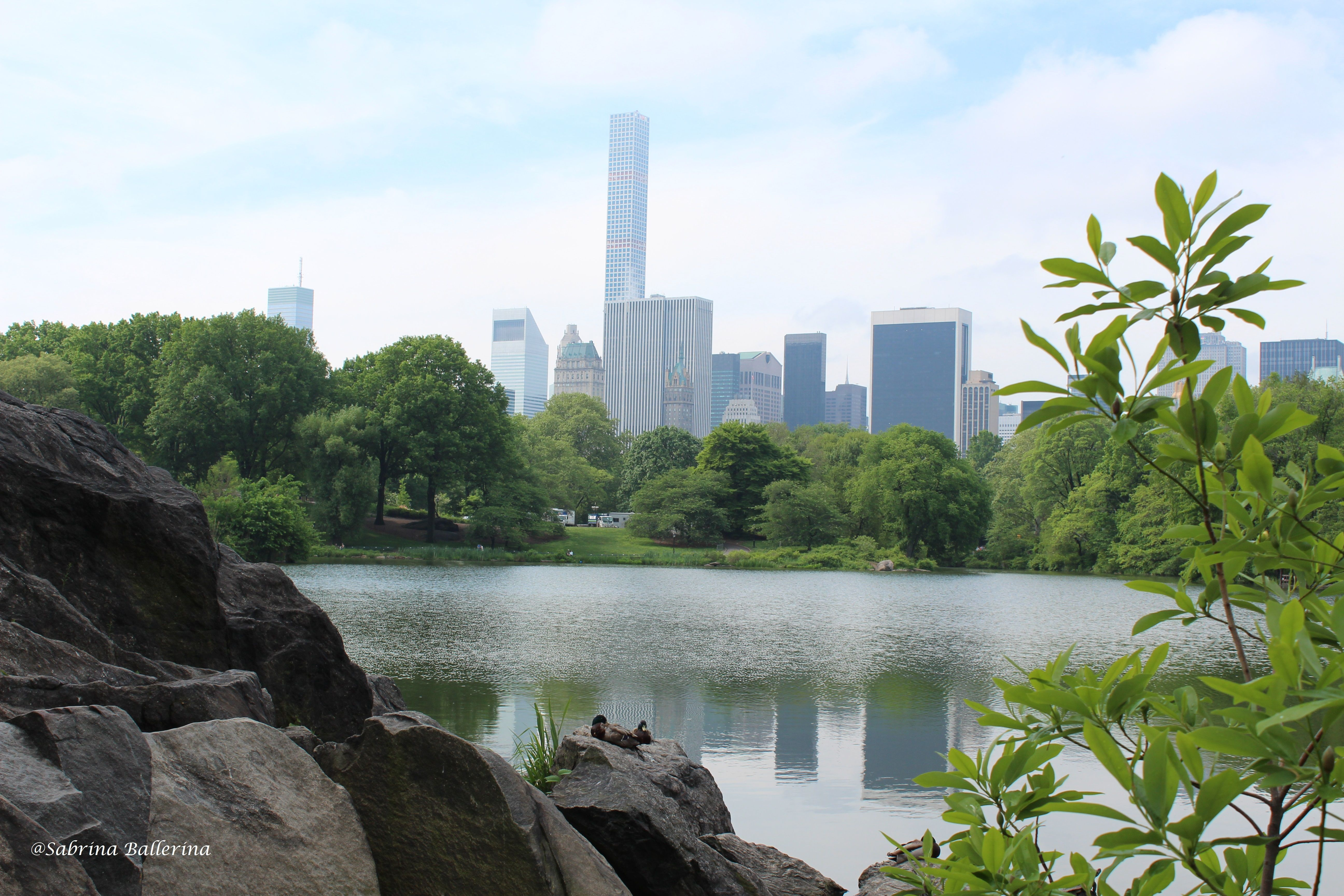 beautiful place at Central Park in New York :)