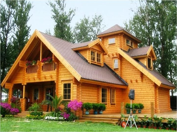 Desain Rumah Kayu Asik Pinterest House Projects Tree Keren