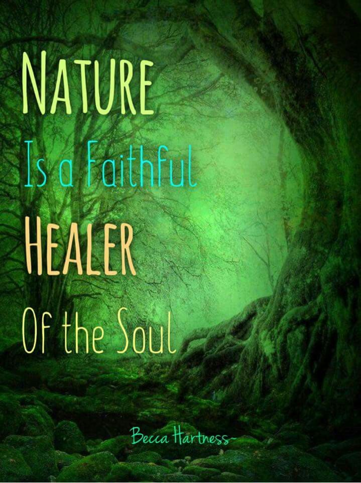 Becca Hartress Nature Quotes Pinterest Nature Quotes Nature