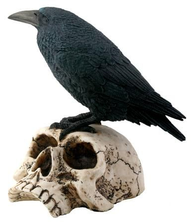 Raven on Skull Statue - 7727 My fav holiday!! Pinterest - skull halloween decorations