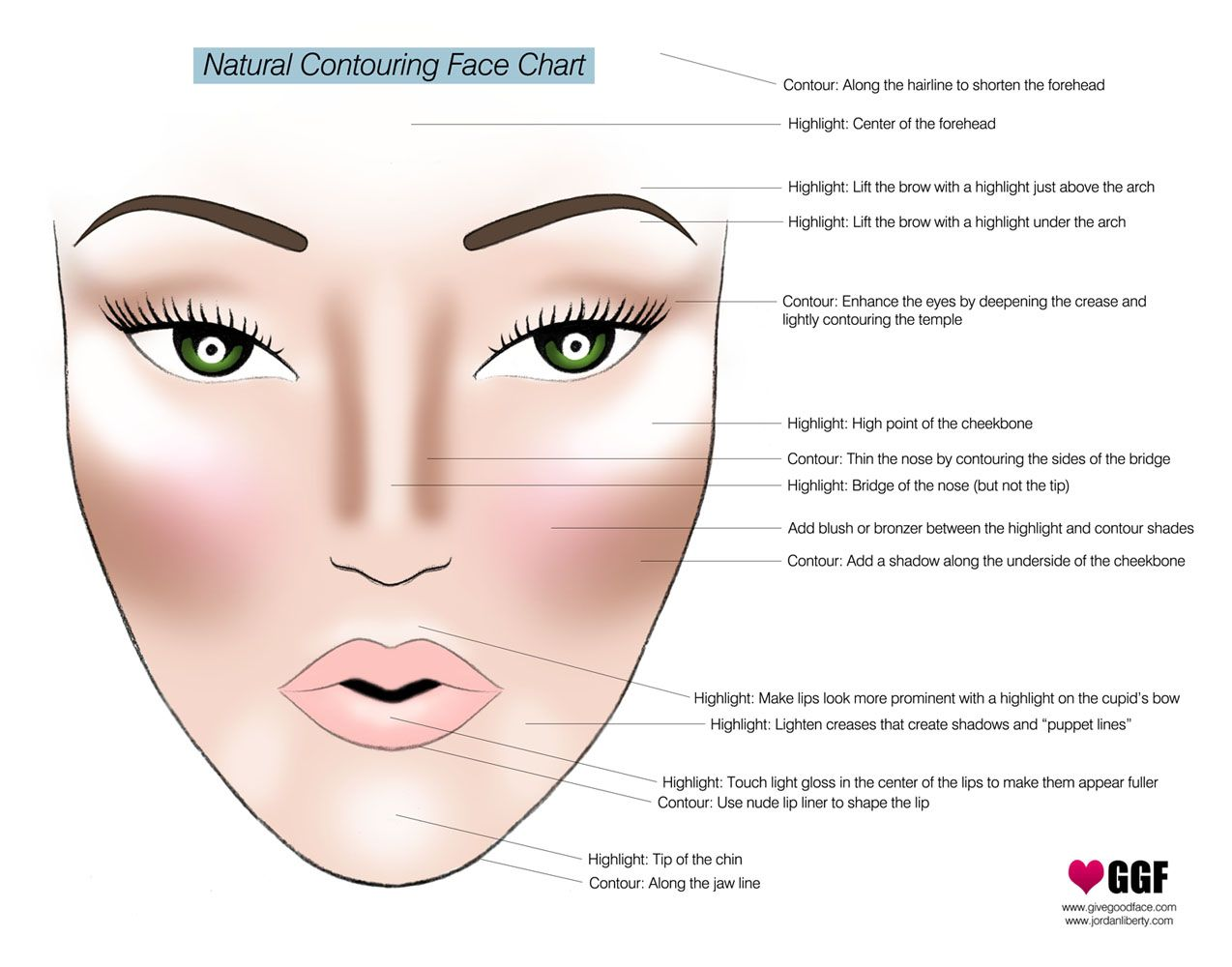 16 best Face Contour & Highlight Illustrations images on Pinterest