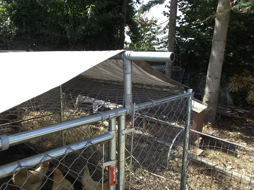 Make Your Own Dyi Dog Kennel Roof Cover Dog Kennels