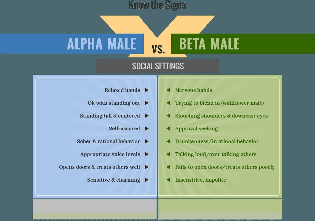Alpha males vs beta males