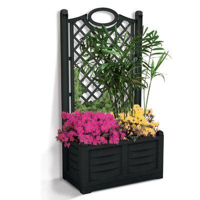 Apolloexportsinternationalinc Self Watering Polyresin Planter Box