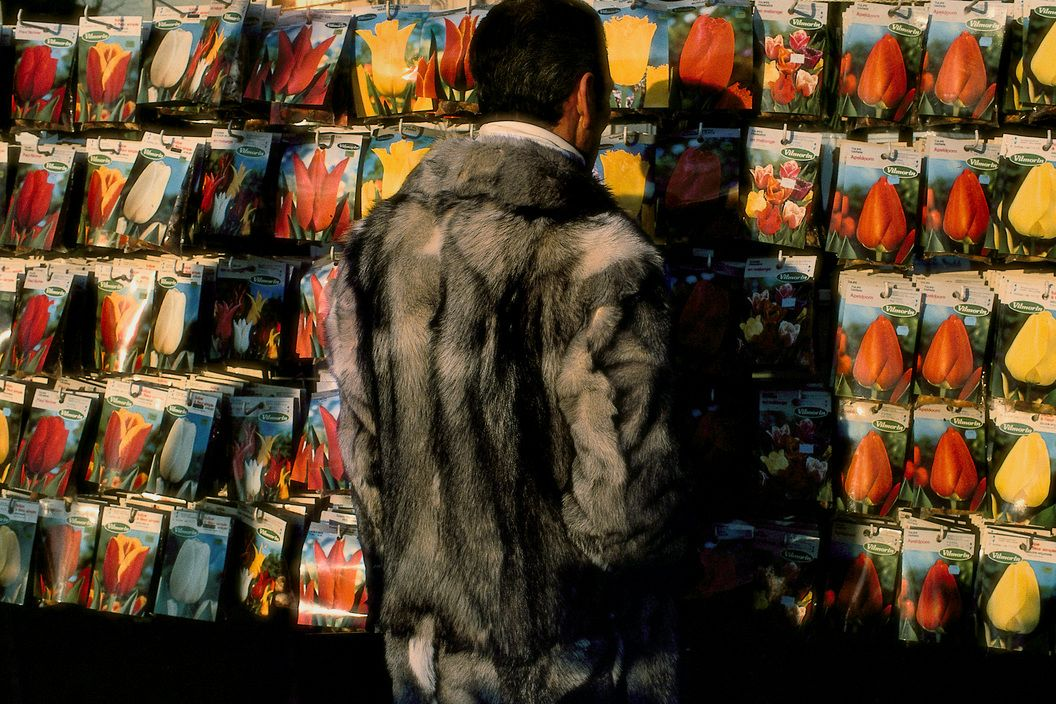 Harry Gruyaert FRANCE. Paris. 1985. Flower market along the banks of the Seine.