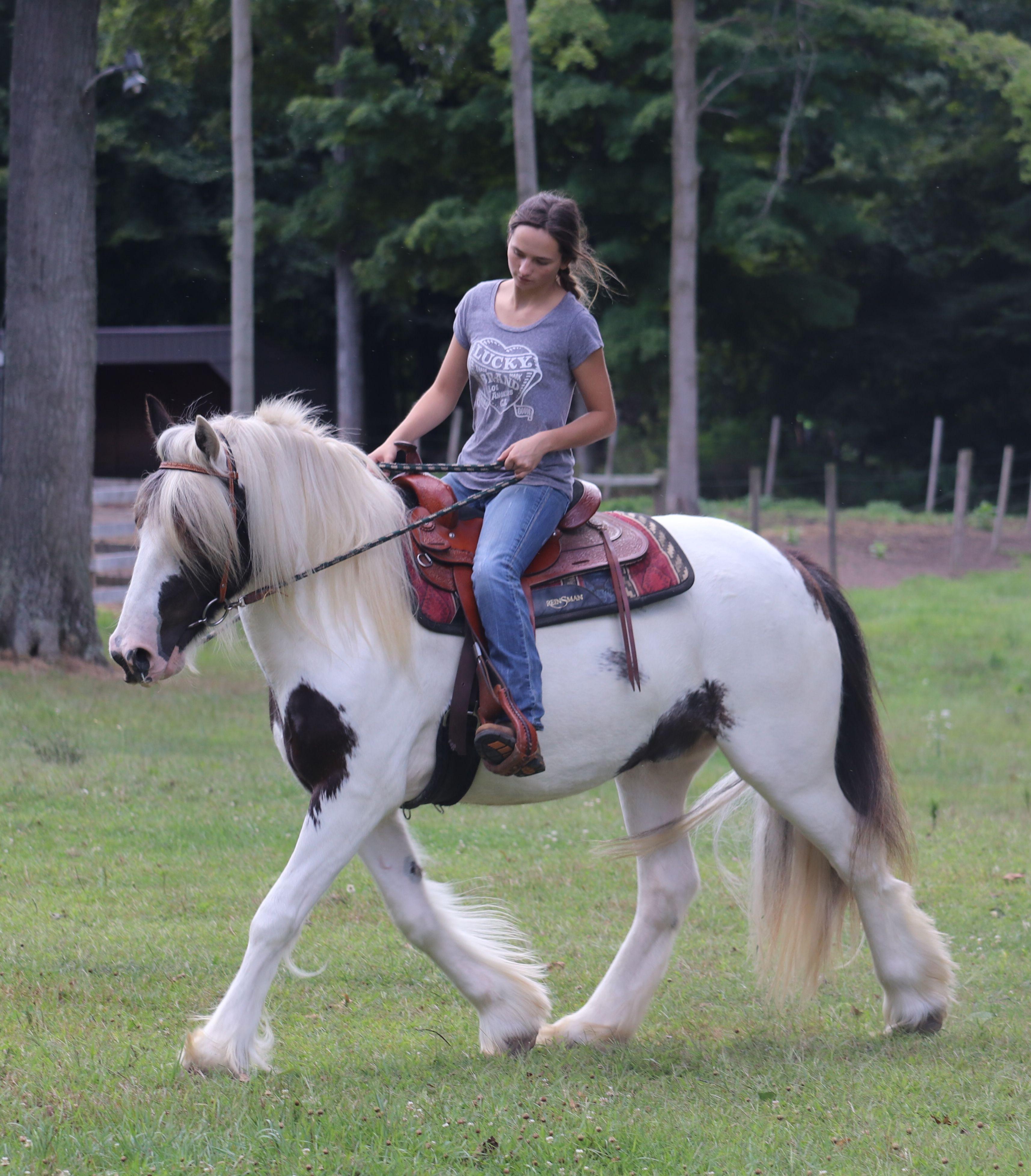 Western Riding Western Riding Riding