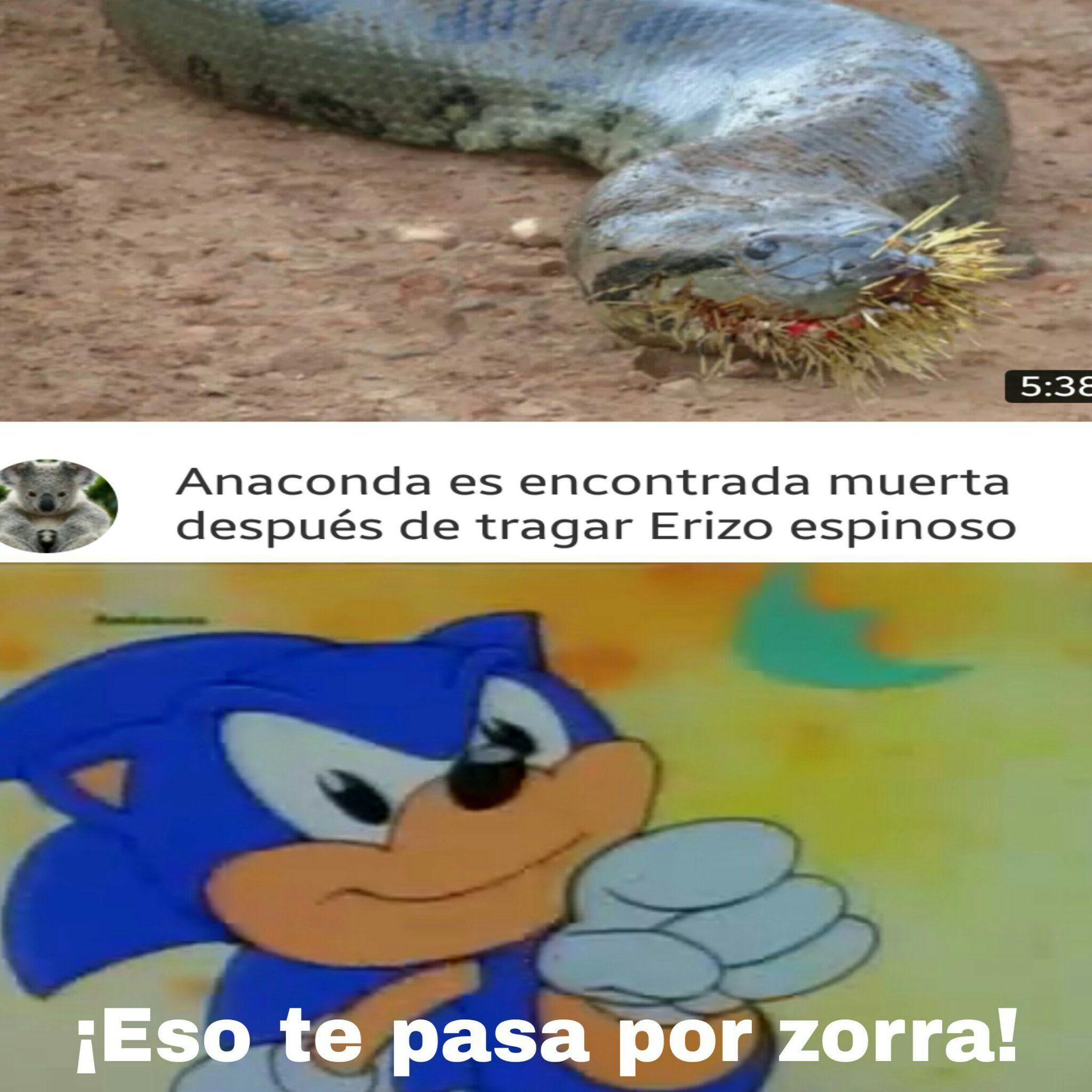 Plantilla combinada - meme | memes | Pinterest | Memes, El meme and Meme