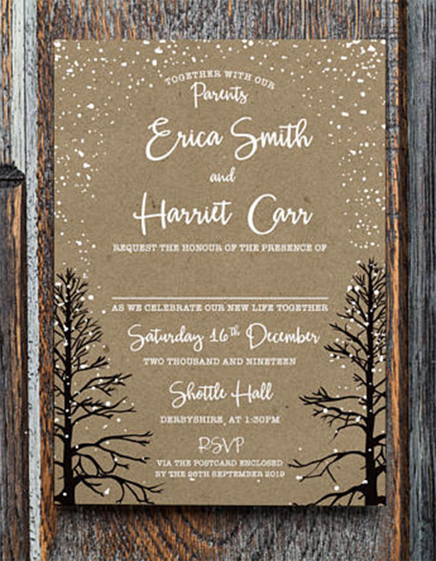 Winter Invitation Wedding Reception Christmas