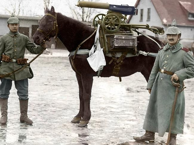 Horse-power ... German soldiers pose near a pack animal with a purpose.