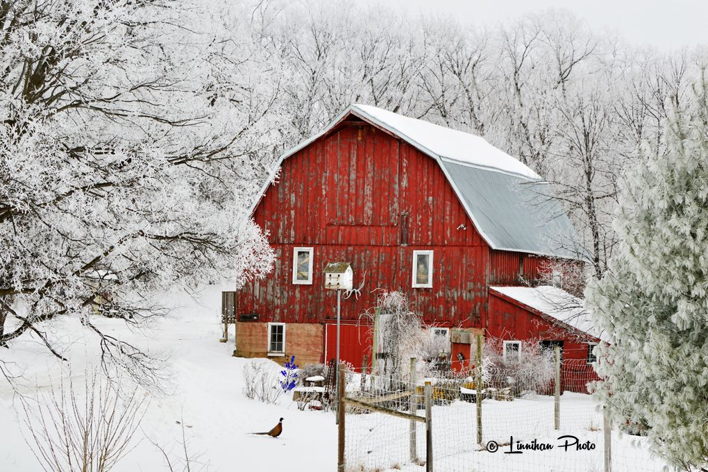Winter Wonderland 17 Old Red Barn In Winter Etsy Barn Painting Red Barn Barn Pictures