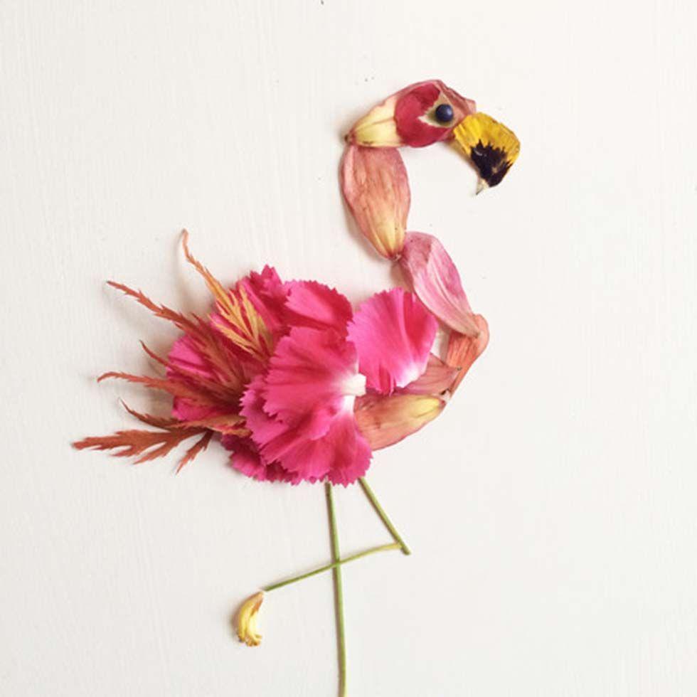 Colagens fotográficas de Flora Forager - Fotografia Profissional