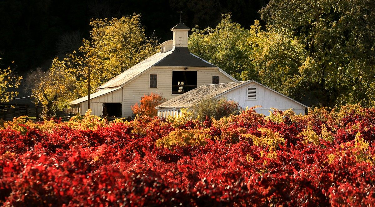 The Best Places To Stop Along Sonoma County S Highway 12 The Good Place Napa Trip Places