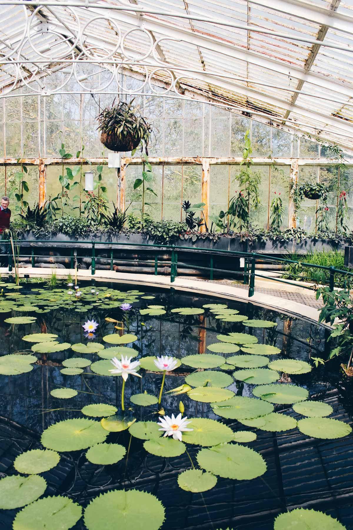 7ee84ecfbb9820acba510fd2b7b6b9d1 - Best Day To Visit Kew Gardens