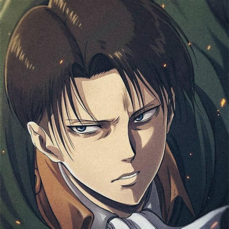 Pin By Andrea Robles On My Future Husband 333333333333 In 2020 Levi Ackerman Attack On Titan Levi Cool Avatars