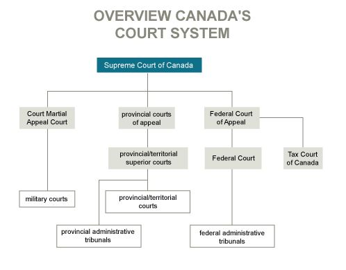 an analysis of the efficiency and effectiveness of the criminal court system in canada Our mission: to improve the legitimacy, efficiency, and effectiveness of state and local criminal justice systems.