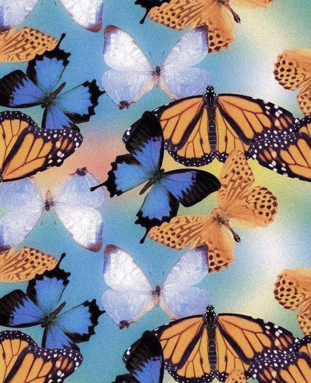 Aesthetic Blue Butterfly Wallpaper Laptop Total Update Find the best wallpaper laptop on getwallpapers. aesthetic blue butterfly wallpaper