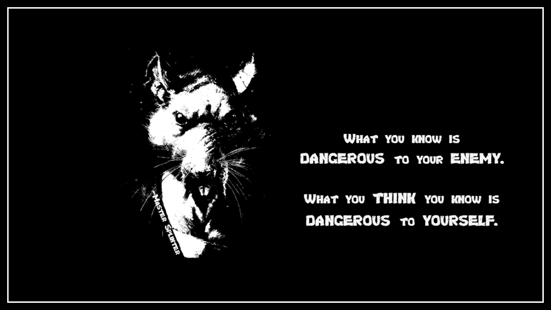 """""""What you think you know…"""" Master Splinter More at"""
