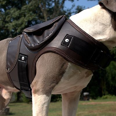 Thick Leather Dog Coat Harness Brown Pitbull Boxer Labrador Collar