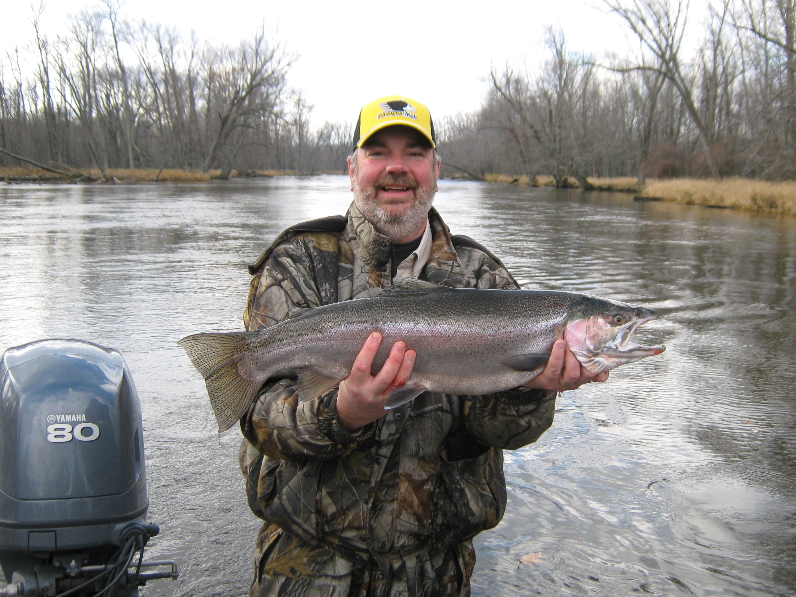 Manistee River steelhead on a cold November day - 2009