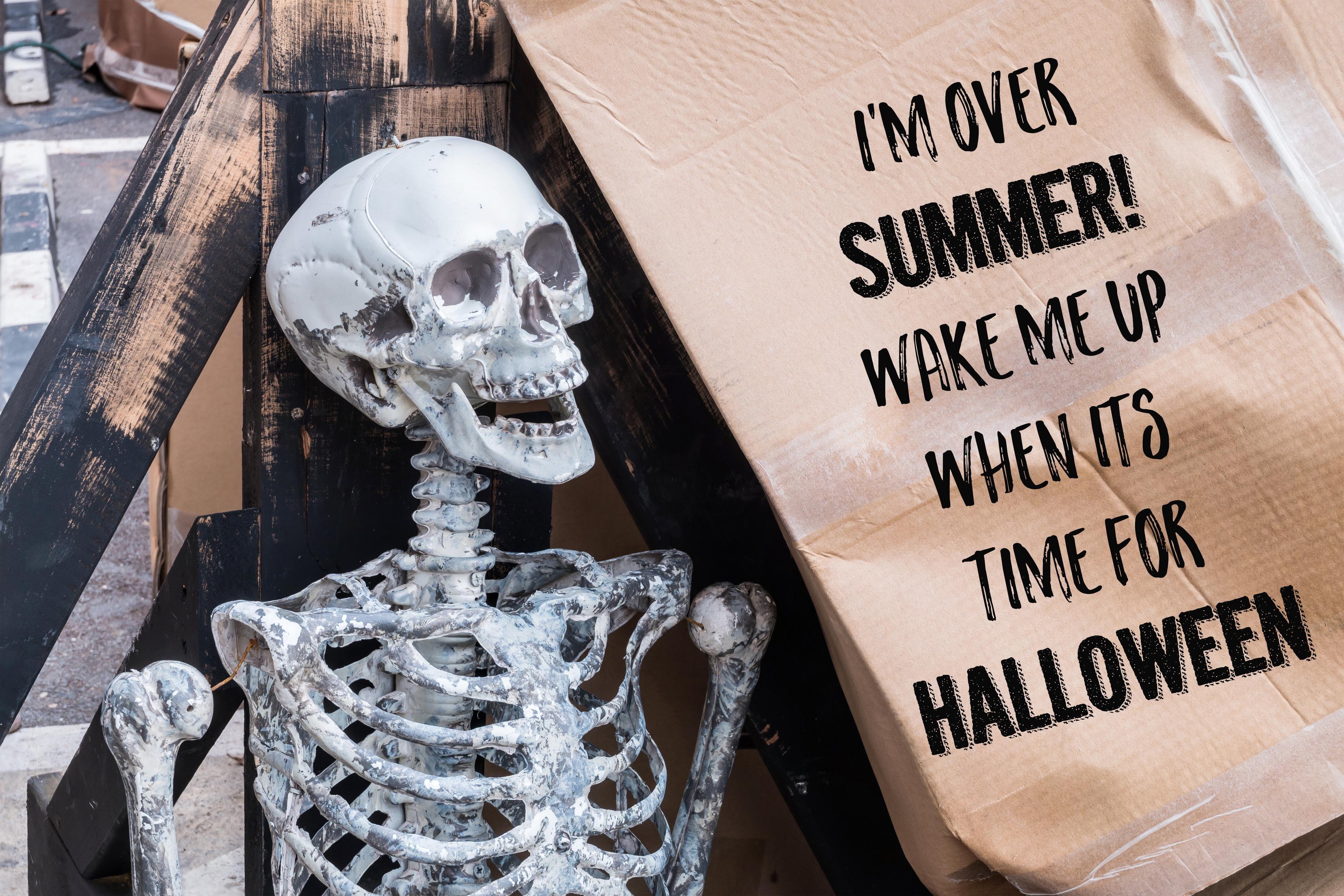 Halloween Memes Download Pumpkin Halloween Memes Halloween Party Supplies Halloween Party Themes