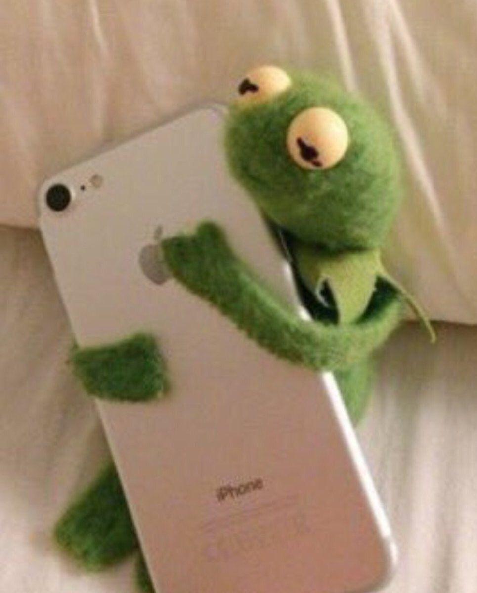 Pin Su Kermit Picturest