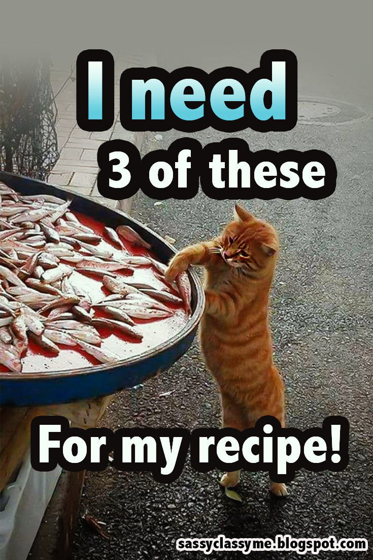 Top 10 Funniest Cat Memes I Need 3 Of These For My Recipe Quotes Memes Cat Funny Hilarious Sassycla Funniest Cat Memes Cat Memes Funny Cat Memes