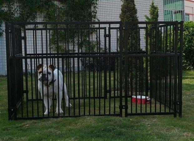 backyard dog run ideas - Google Search   Dog runs, Dogs ...
