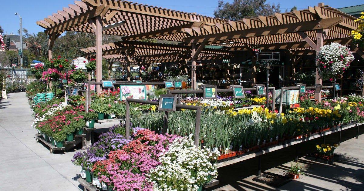Armstrong Garden Center Encinitas Hours With Images Backyard