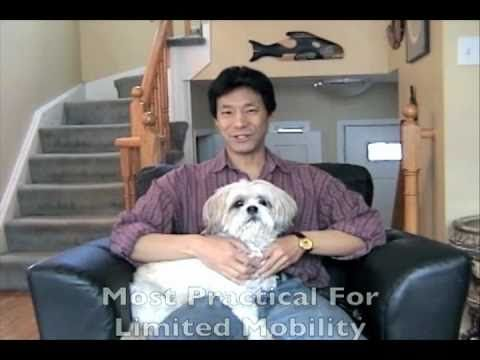 Puppy Potty Training Dogs Indoors With Dog Litter Box Youtube