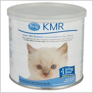 Kmr Powder For Kittens 6 Oz Kitten Food Cat Health Care Feeding Kittens