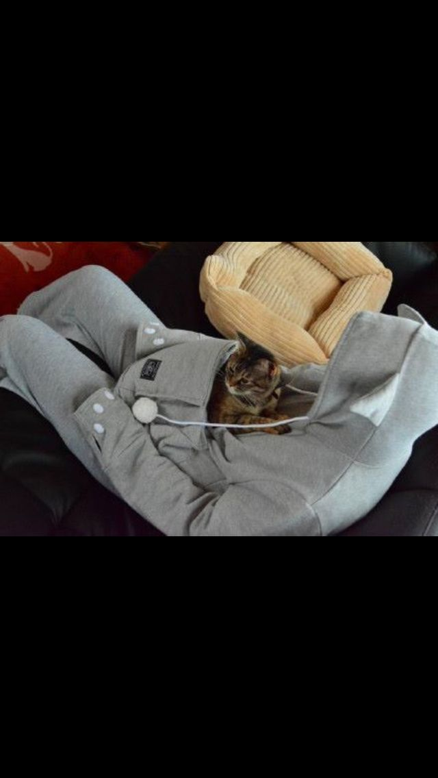 I want one. kitty pouch