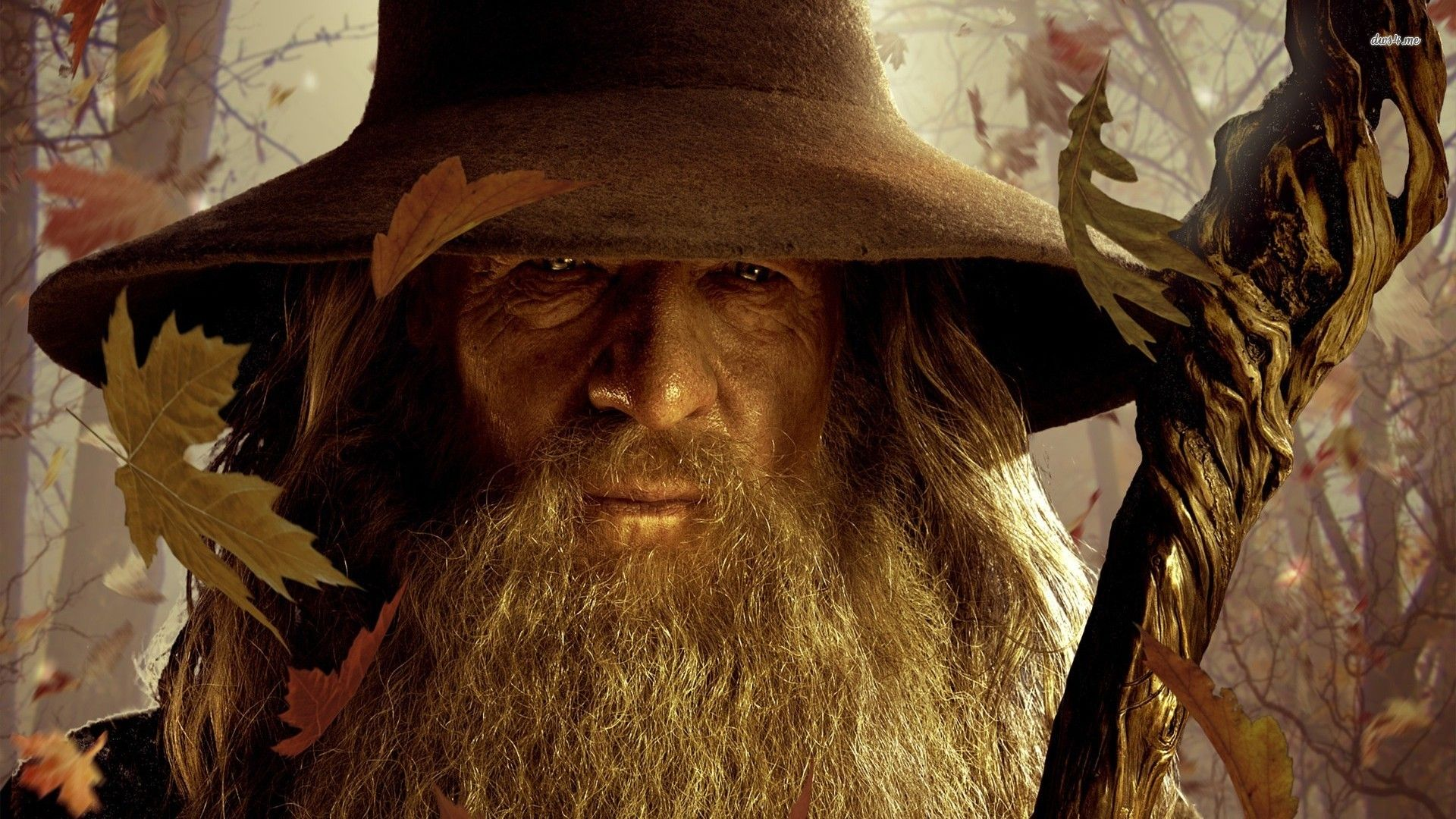 Movie The Lord of the Rings Gandalf LOTR Wallpaper HD 15