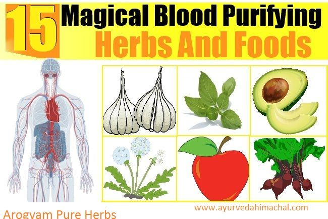 Purify Blood with AROGYAM PURE HERBS RAKTA SHODHAK TABLET | Arogyam