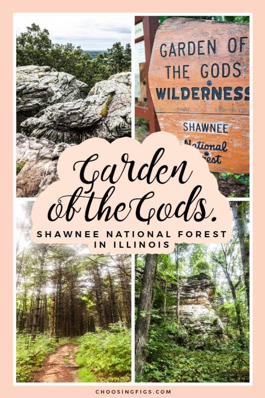 Garden of the Gods at Shawnee National Forest. • Choosing Figs