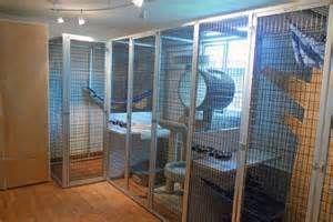 Indoor Raccoon Enclosure Yahoo Image Search Results Pet Enclosure Pet Raccoon Pet Cage
