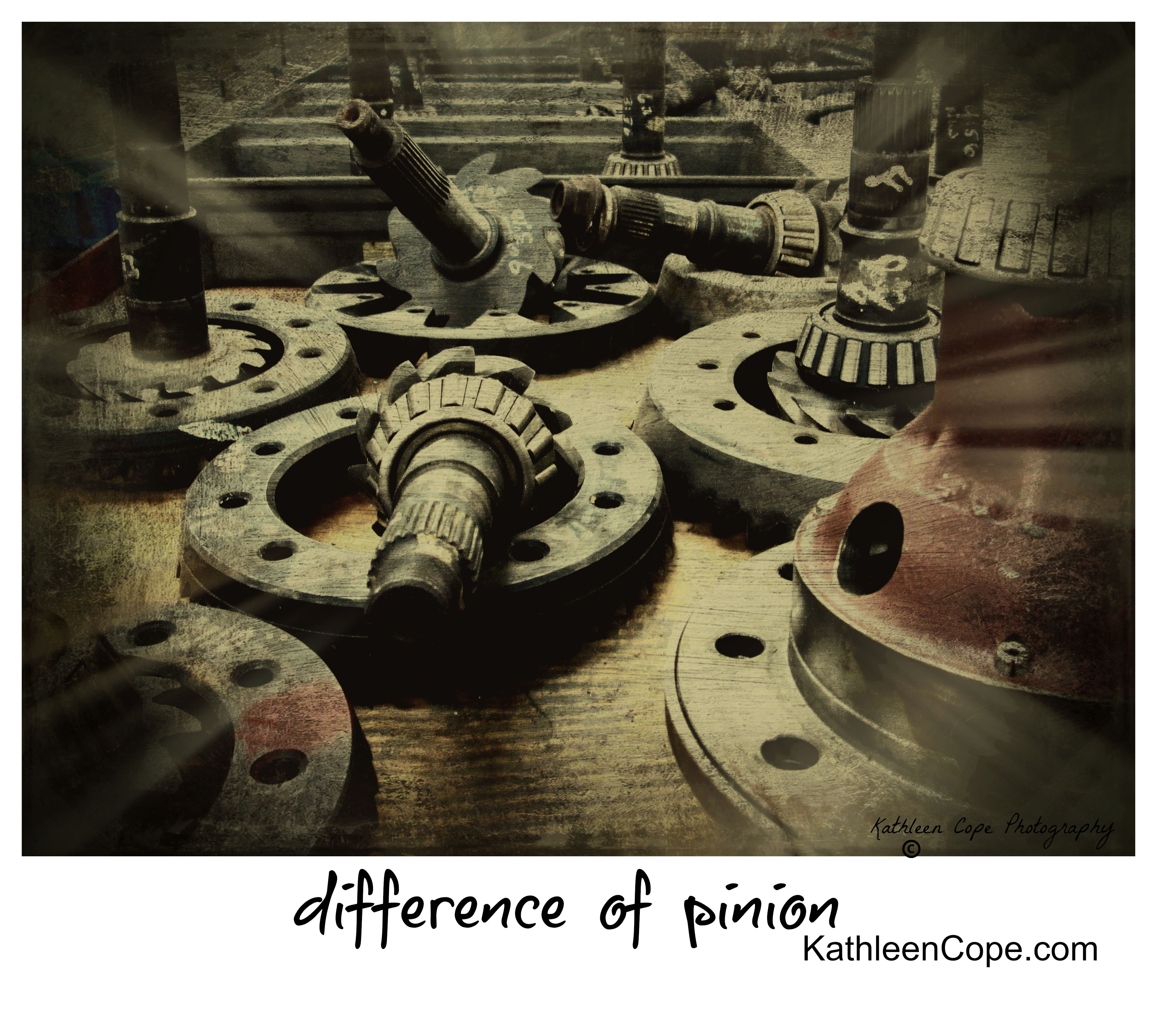"well who hasn't had a ""Difference of Pinion"" with someone else!!   Available in 5x7, 8x10, 11x14 and 16x20.  This image has been Copyright and cannot be reproduced."