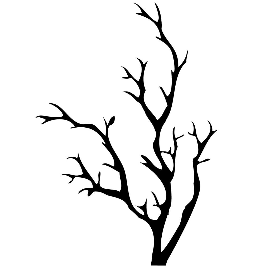 bare branch tattoo best photos of tree with no leaves clip art rh pinterest co uk