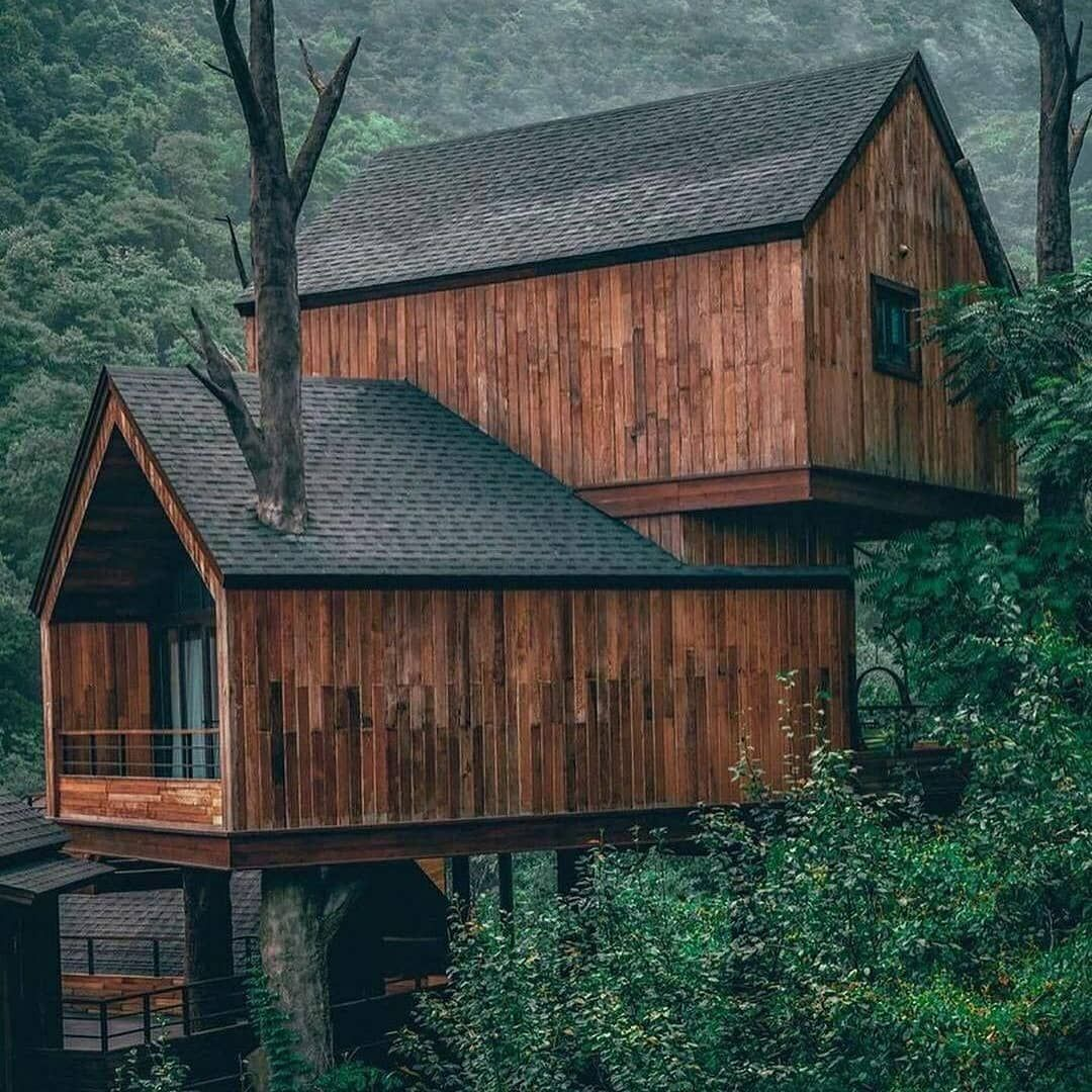Woodworking Art On Instagram Credit Youknowcyc Follow Woodwork Arts For More Double Tap Comment Tag In 2021 Tree House Architecture Forest House