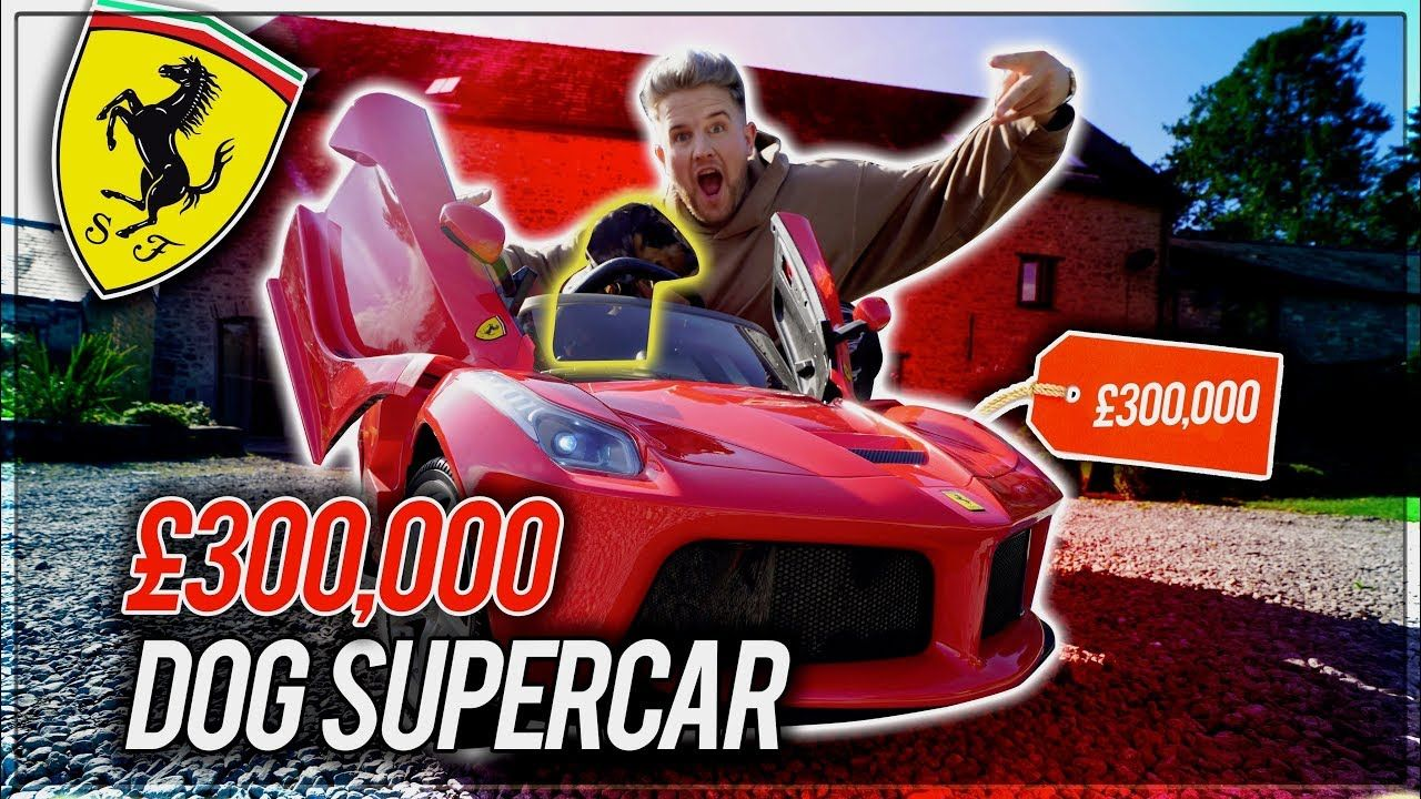 I Bought My Puppy A 300 000 Supercar Super Cars Puppies Ben Phillips