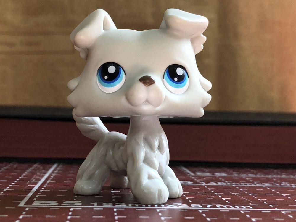 Littlest Pet Shop LPS Black White  Collie Dog Green Eyes w//accessories