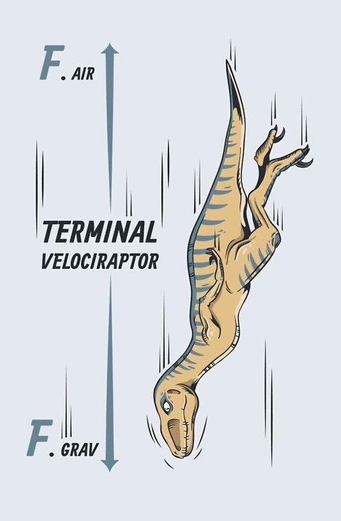Free Body Diagrams Physics Made Fascinating Random Funnies