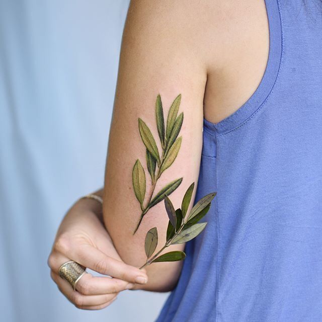 Photo of 35 Plant Tattoo Ideas & Inspiration – Brighter Craft