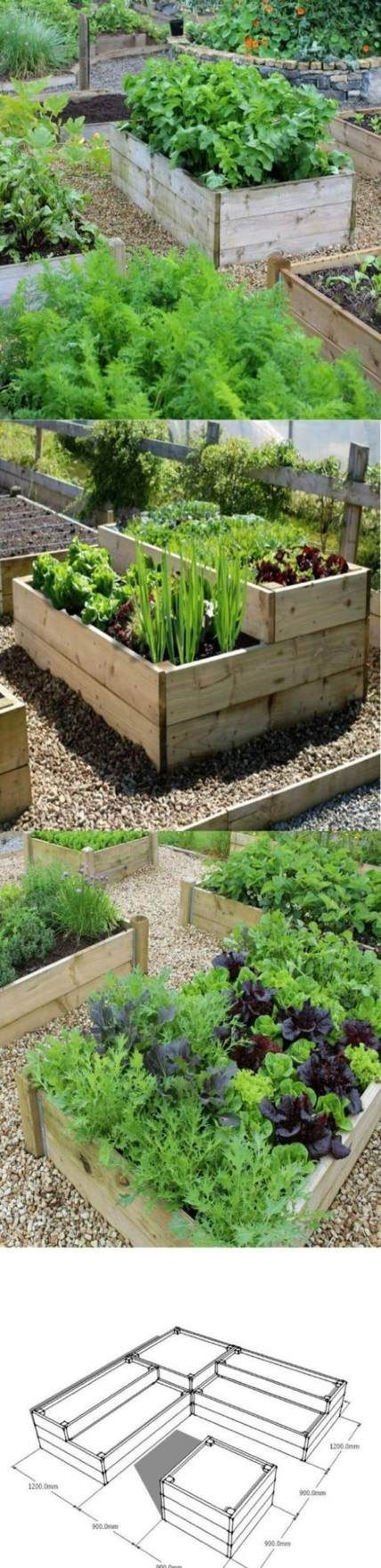 Photo of 54 ideas to build a garden path cheaply
