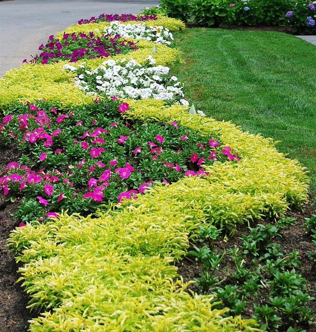 7 Affordable Landscaping Ideas For Under 1 000: If Our Car Hadn't Broken Down Just 12 Miles From