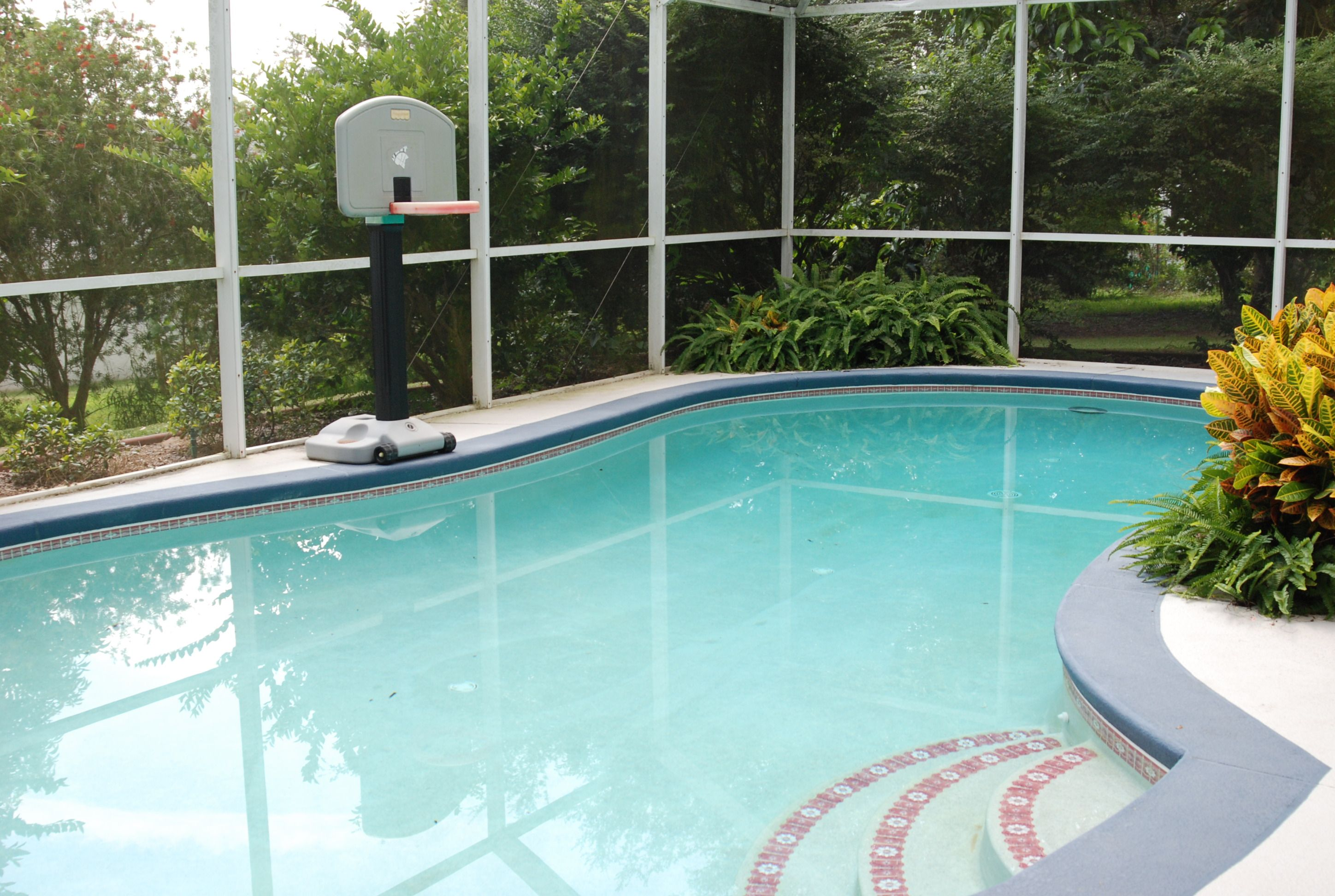 Extra Large Pool With Screen Enclosure With Large Lanai Pool Houses Screen Enclosures Florida Home