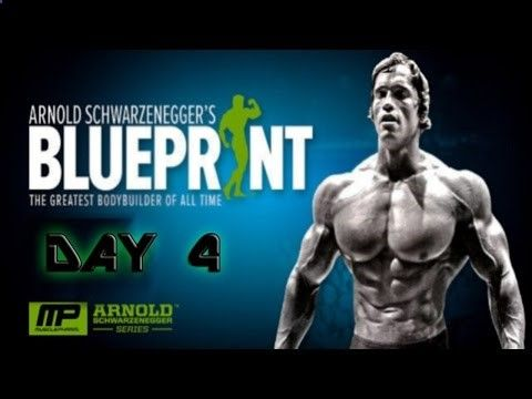 Arnolds Blueprint Cut Day 3 Chest Back - YouTube Beauty Pinterest - new arnold blueprint app
