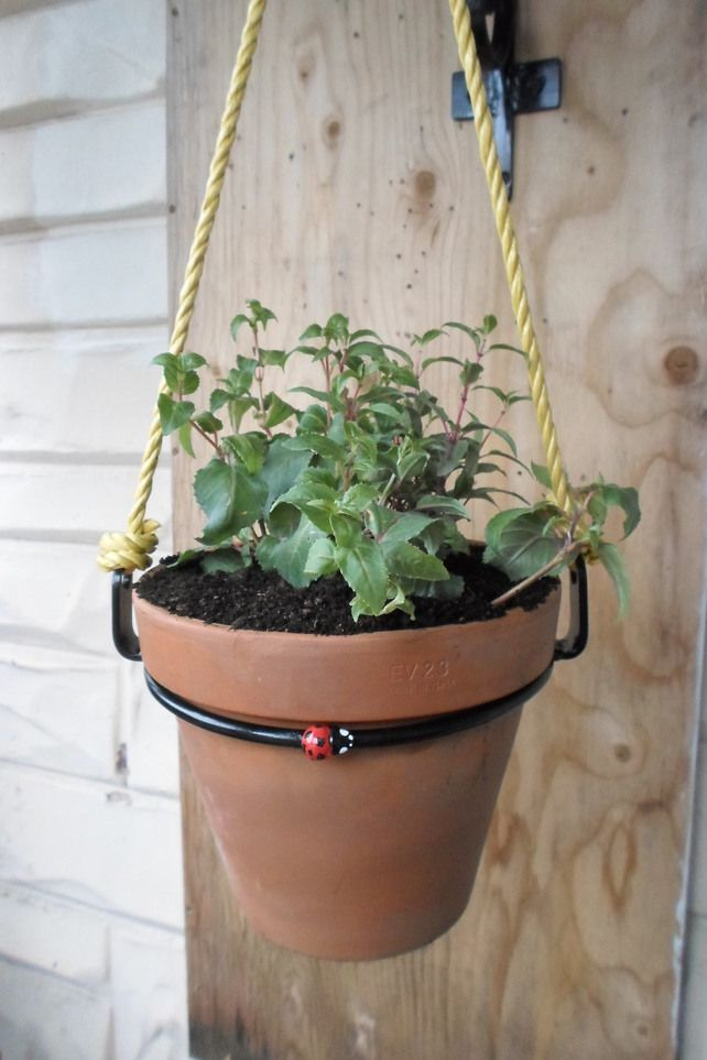 These Wrought Iron Flower Pot Rings Are Great For Hanging Plants