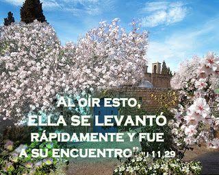 EVANGELIO DE JUAN: ELLA SE LEVANTÓ Ju 11,29